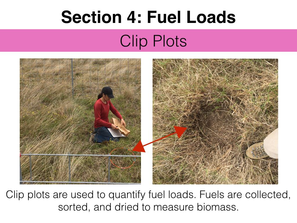 FuelsTM_Slides_11.4.16_Edits.038.jpeg