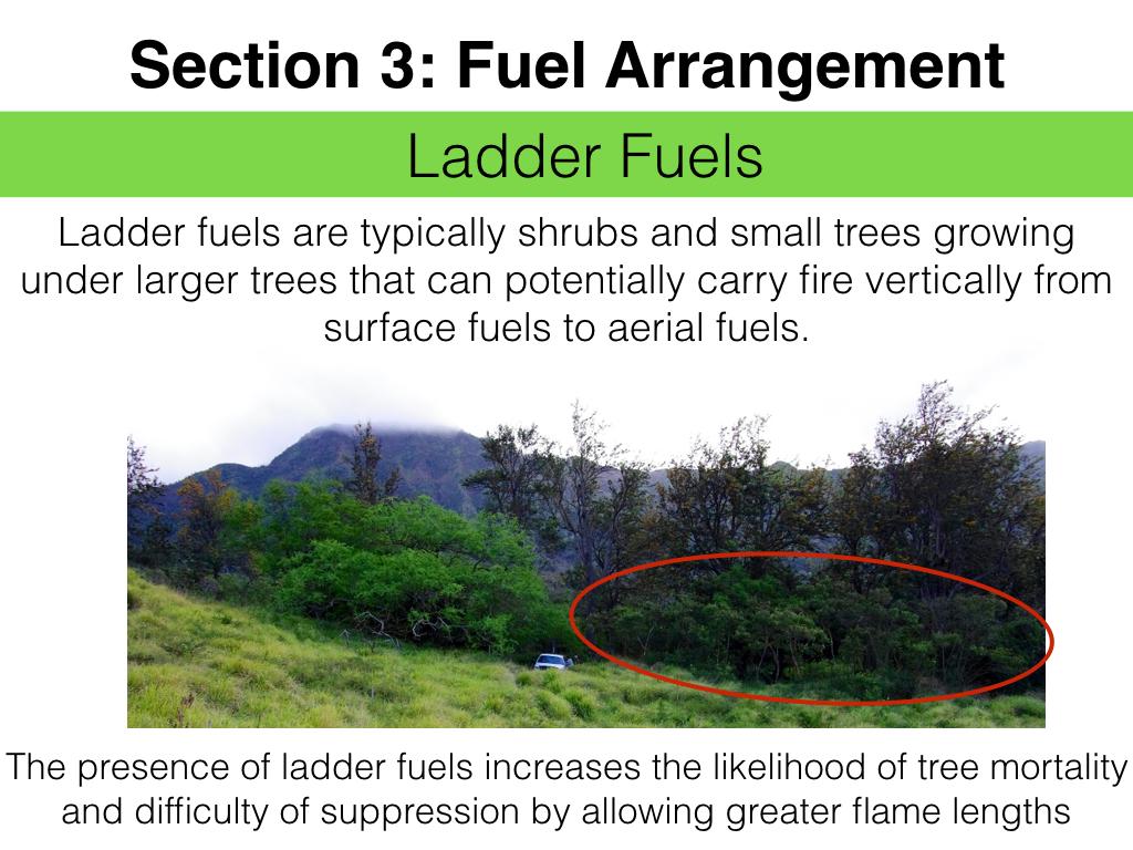 FuelsTM_Slides_11.4.16_Edits.031.jpeg
