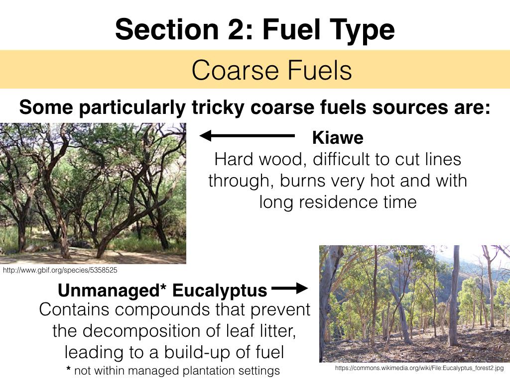 FuelsTM_Slides_11.4.16_Edits.019.jpeg