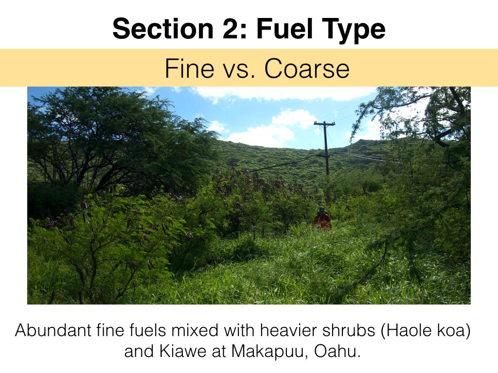 FuelsTM_Slides_11.4.16_Edits.013.jpeg