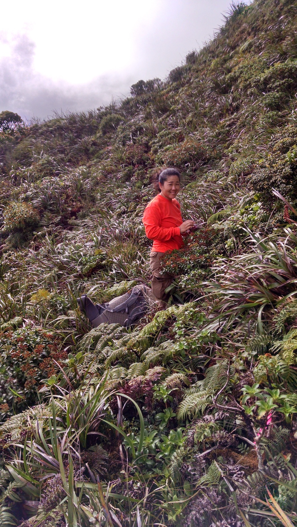 Amy Tsuneyoshi in the field. Source: Amy Tsuneyoshi.