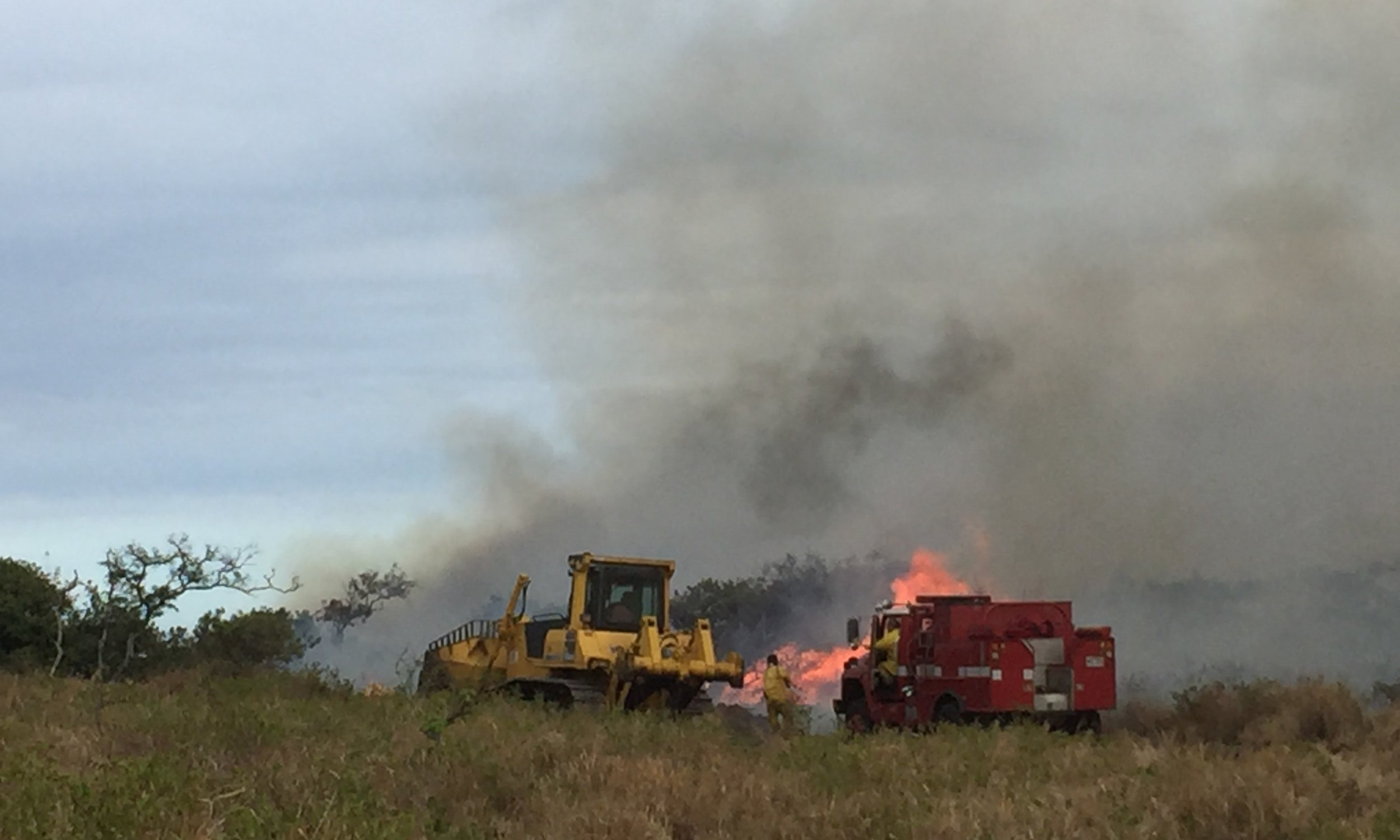 Firefighters at work on the Sept. 21st 2017 Ka'u Fire. Photo: Michelle Galimba