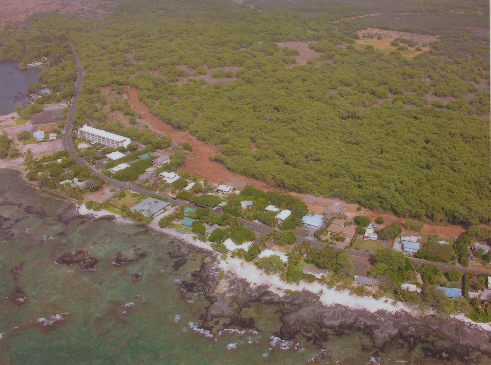 The Puako community fuel break appears as a devegetated buffer of brown between the houses and kiawe trees. Photo: Hawaii Wildfire Management Organization.
