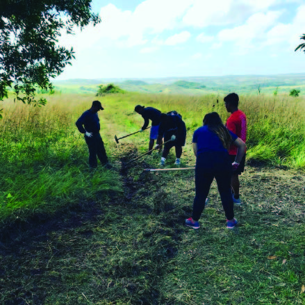 Guam high school students maintain a firebreak. Photo: Guam Forestry