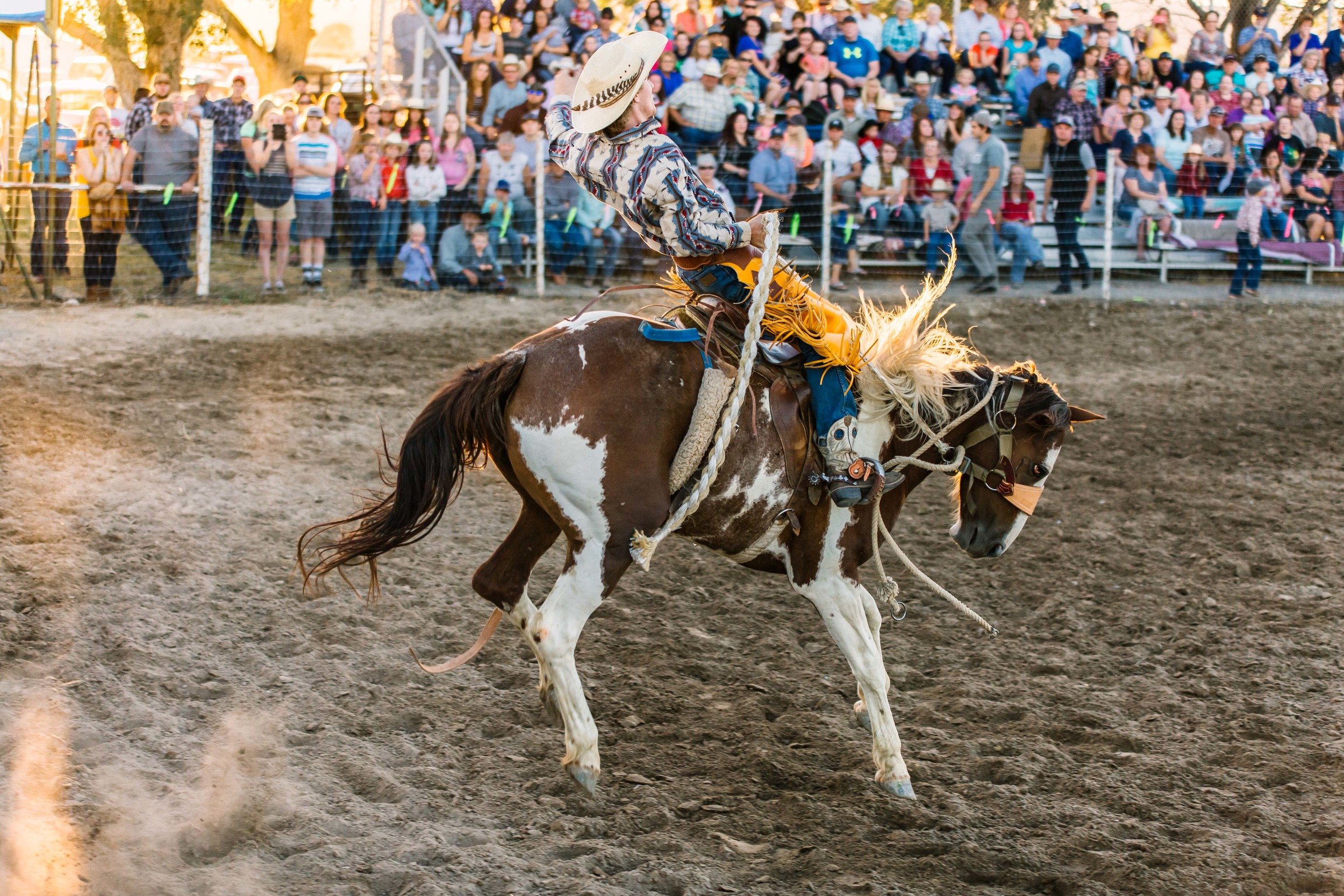Stone Rodeo Photographer-0290.jpg