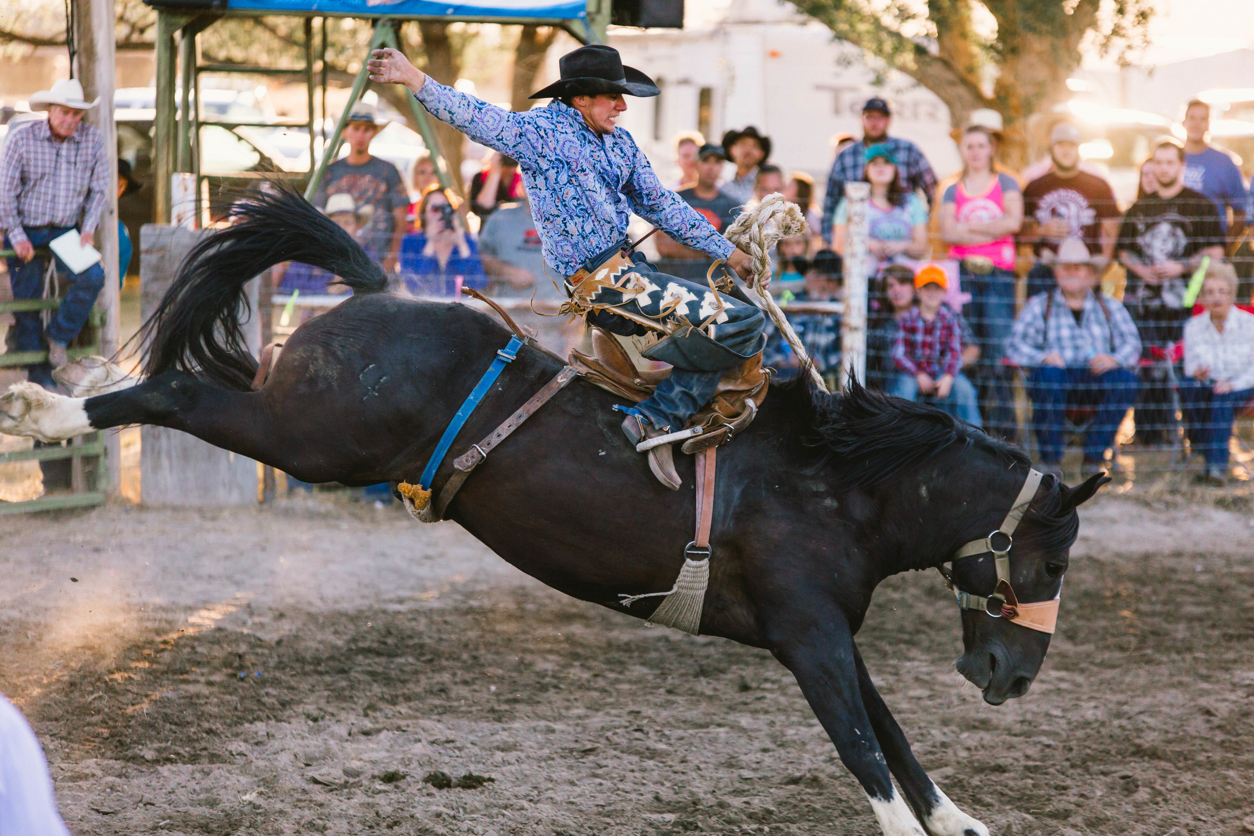 Stone Rodeo Photographer-0972.jpg