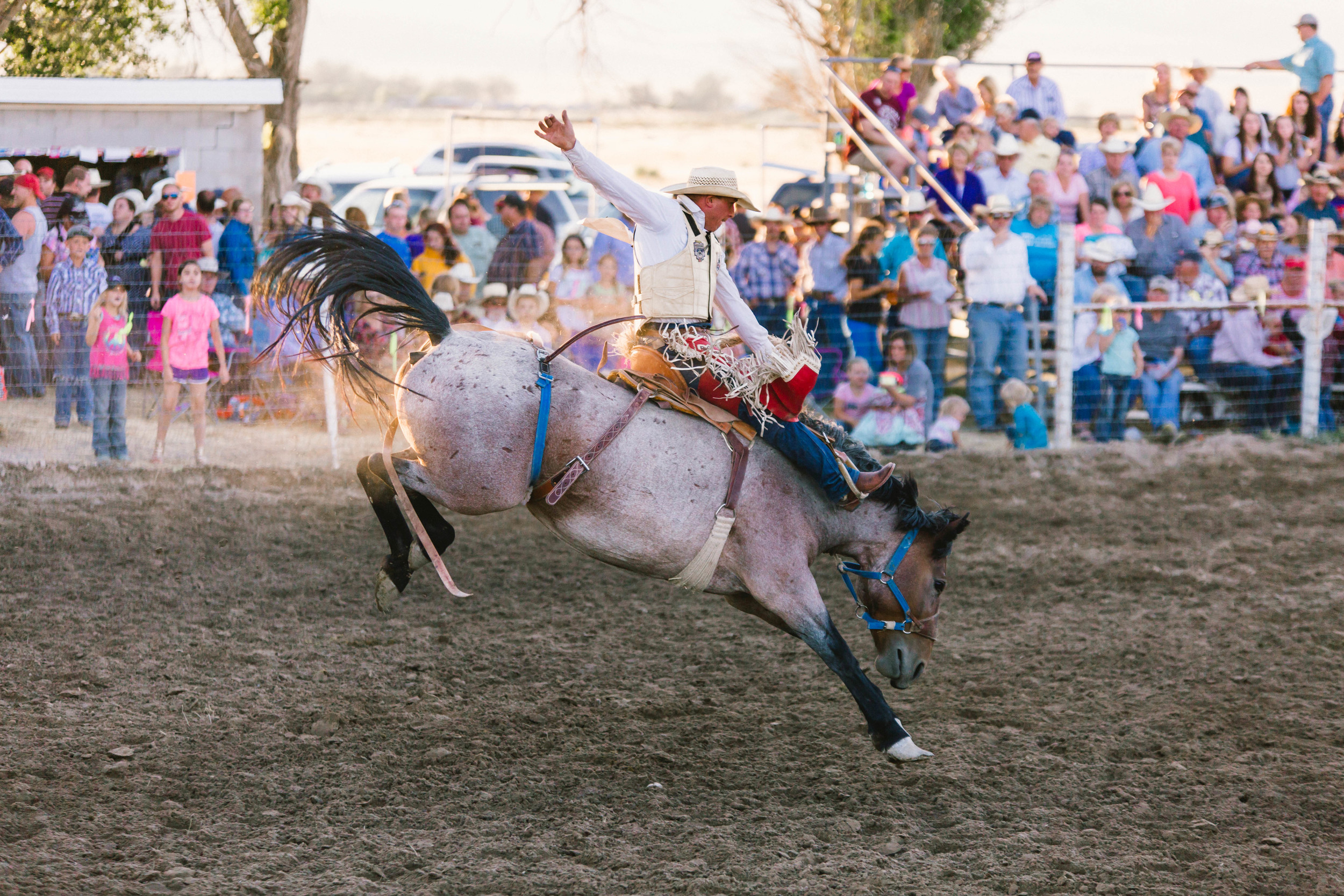 Stone Rodeo Photographer-0987.jpg