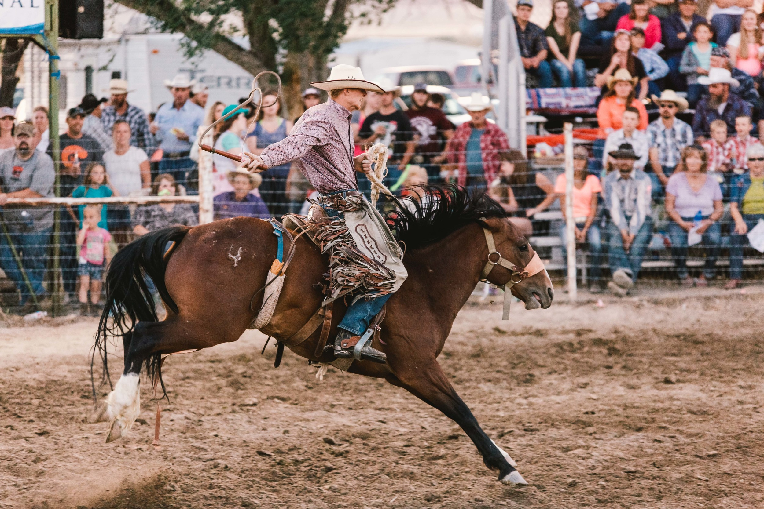 Stone Rodeo Photographer-1229.jpg