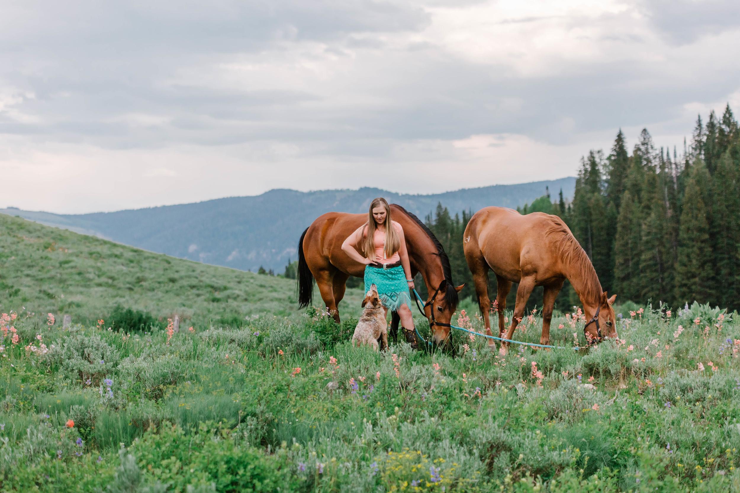 Tony Grove horse photography-7131.jpg