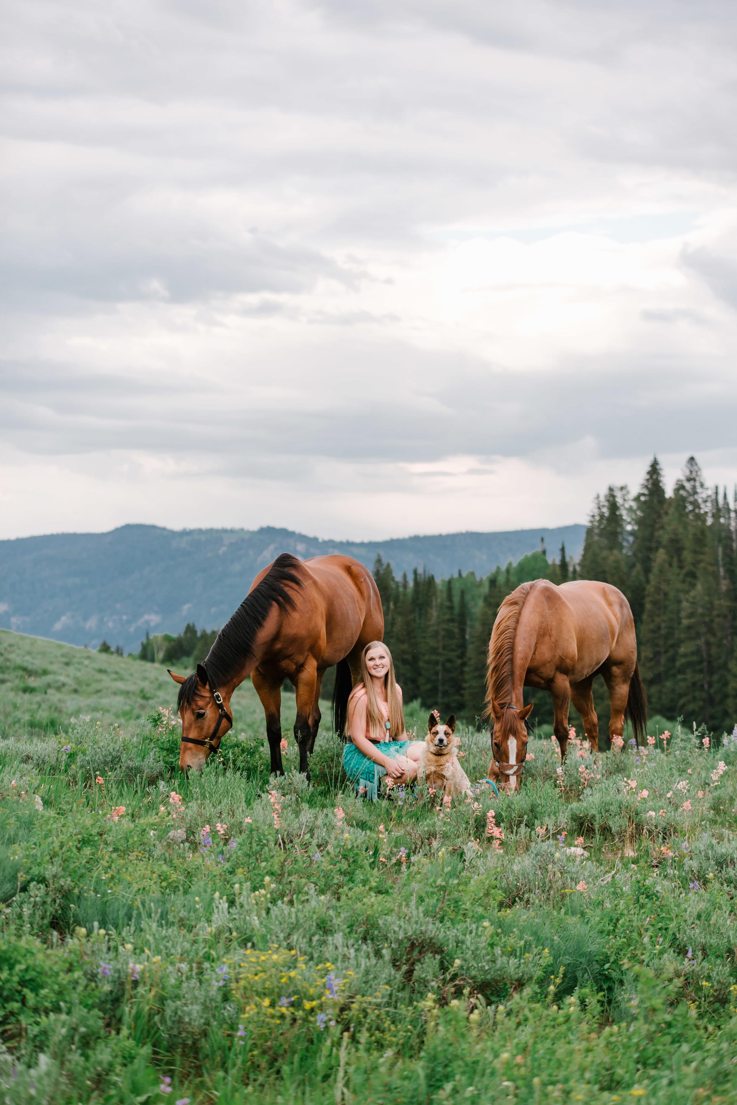 Tony Grove horse photography-7170.jpg