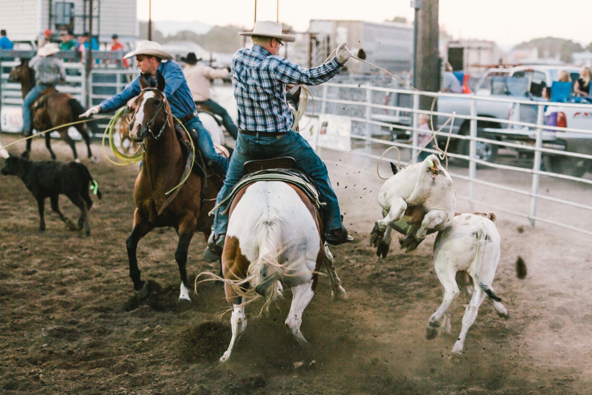Oneida County Fair-4483.jpg