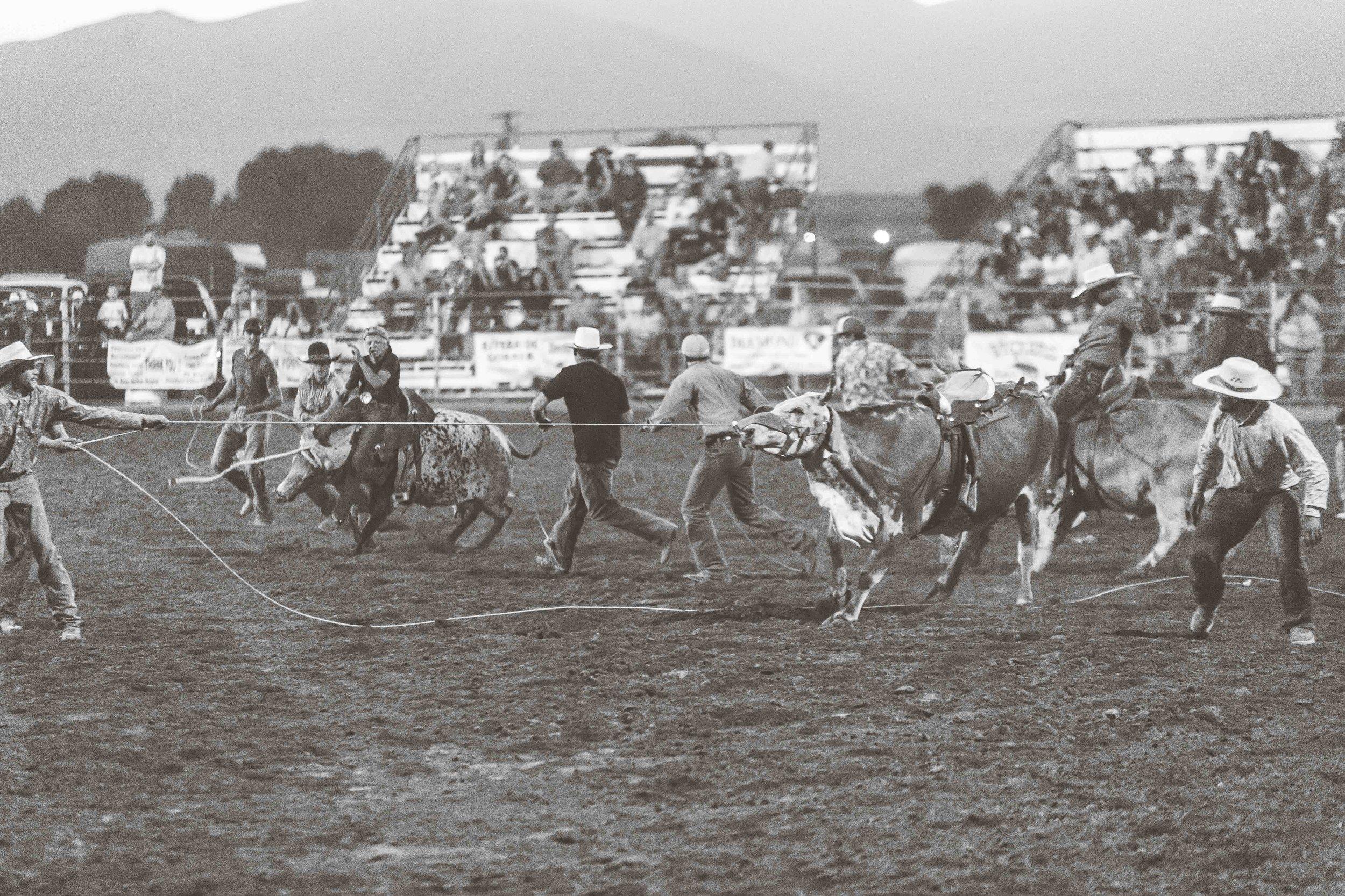 Oneida County Fair-4521.jpg
