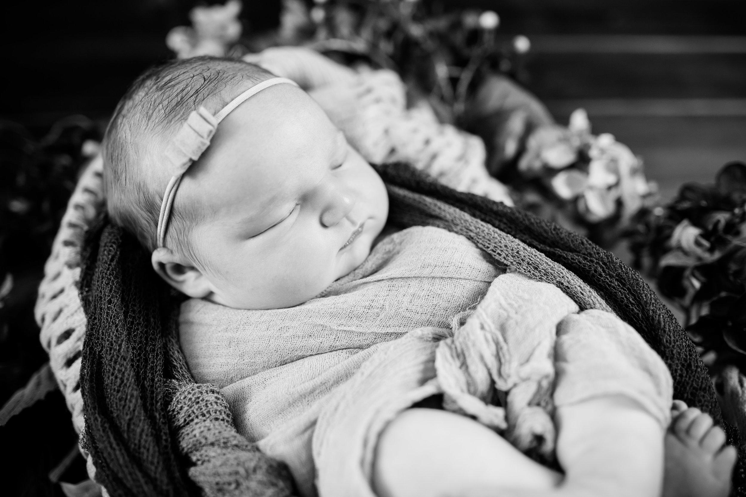 Logan Utah Newborn Photographer-7038.jpg