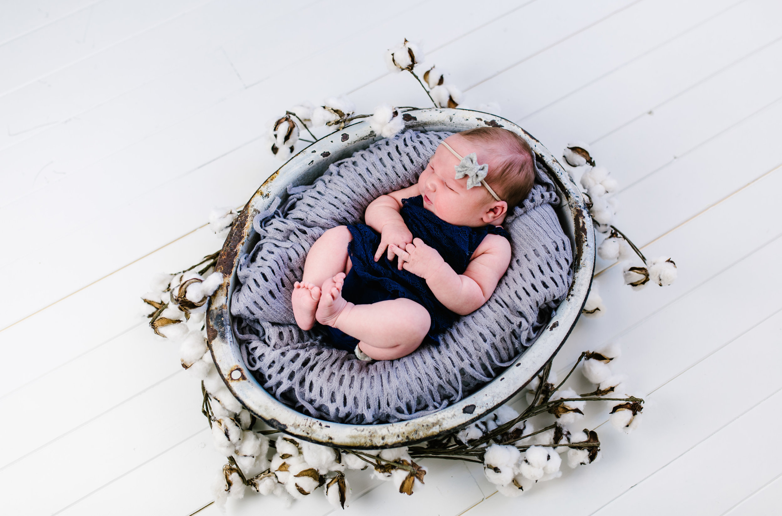 Logan Utah Newborn Photographer-7141.jpg