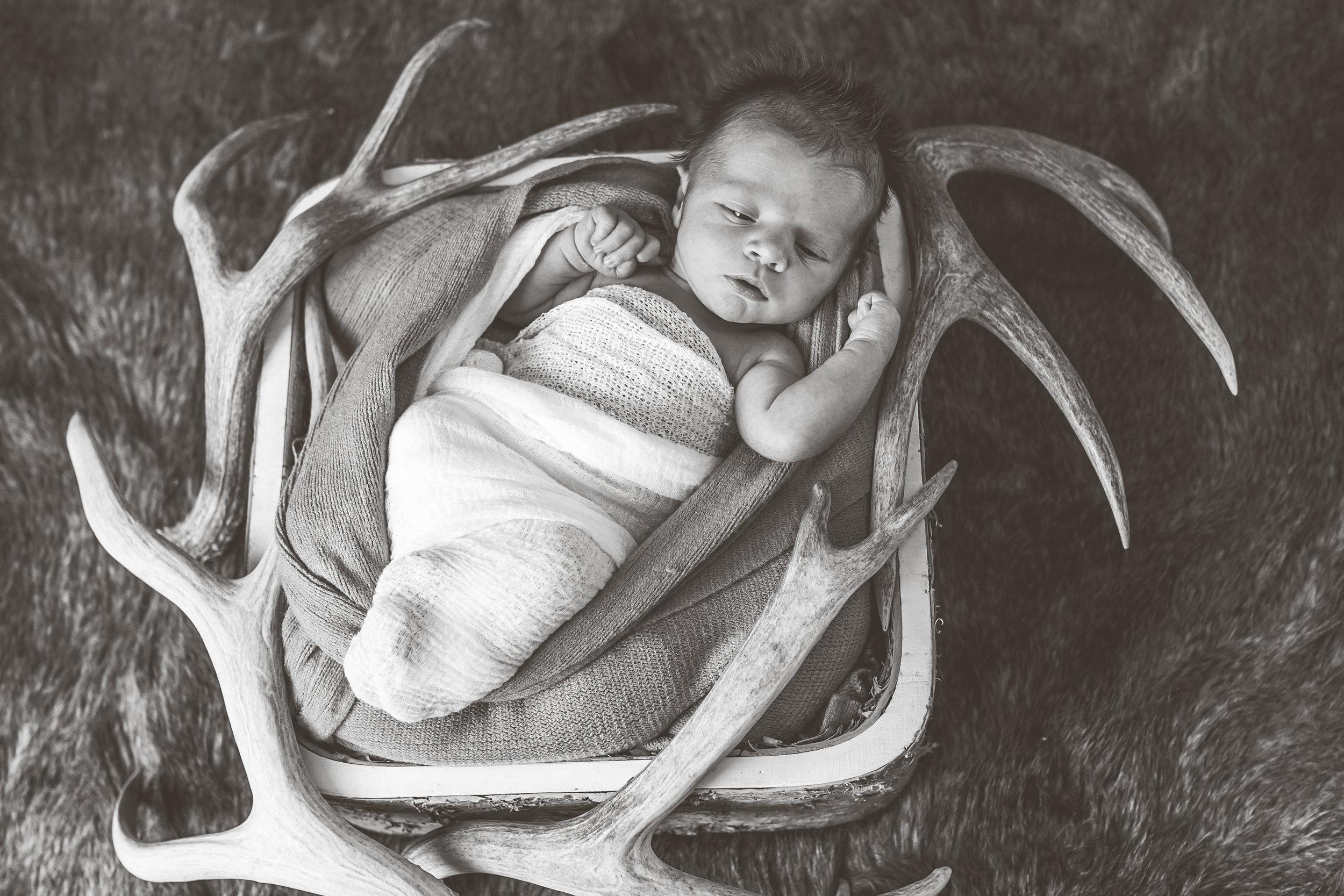 Logan Utah Newborn Photographer-3767.jpg