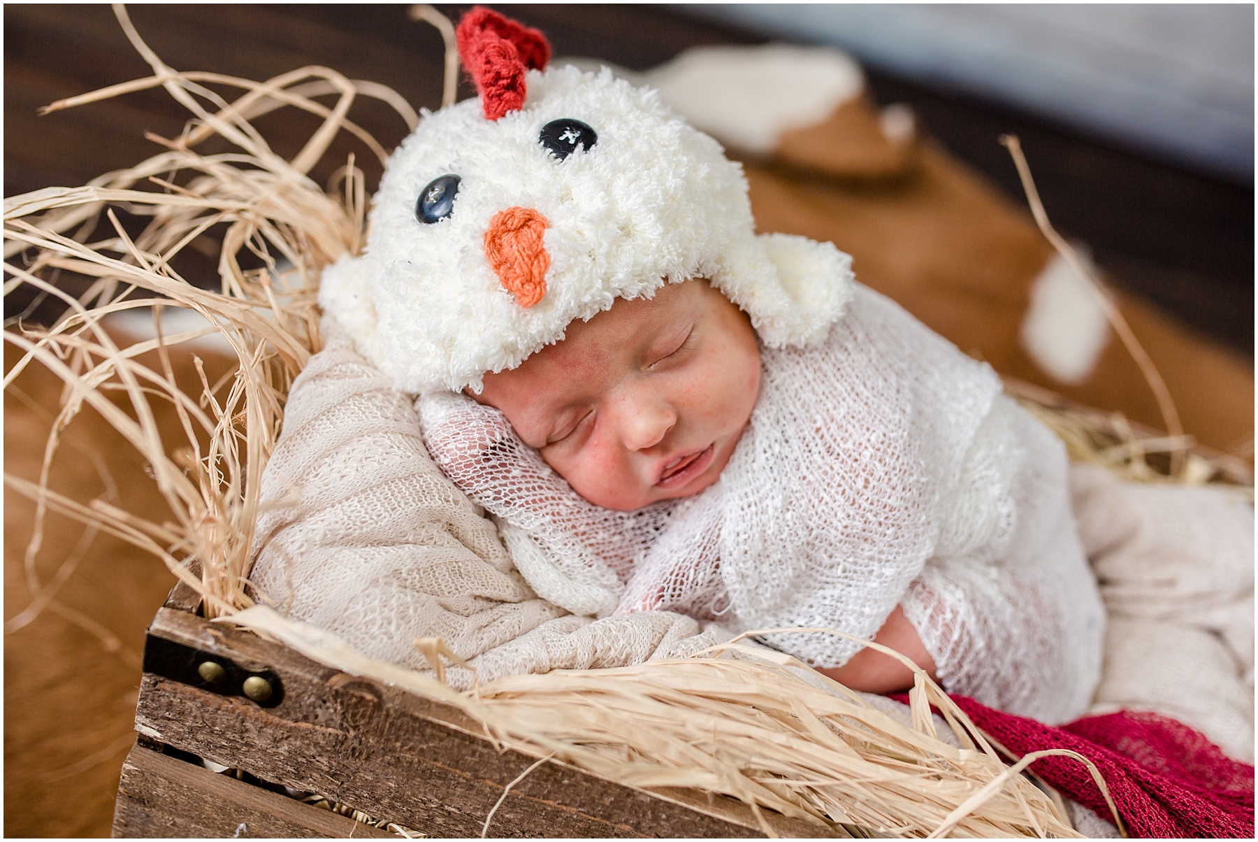 Logan-Newborn-Photographer_1281.jpg