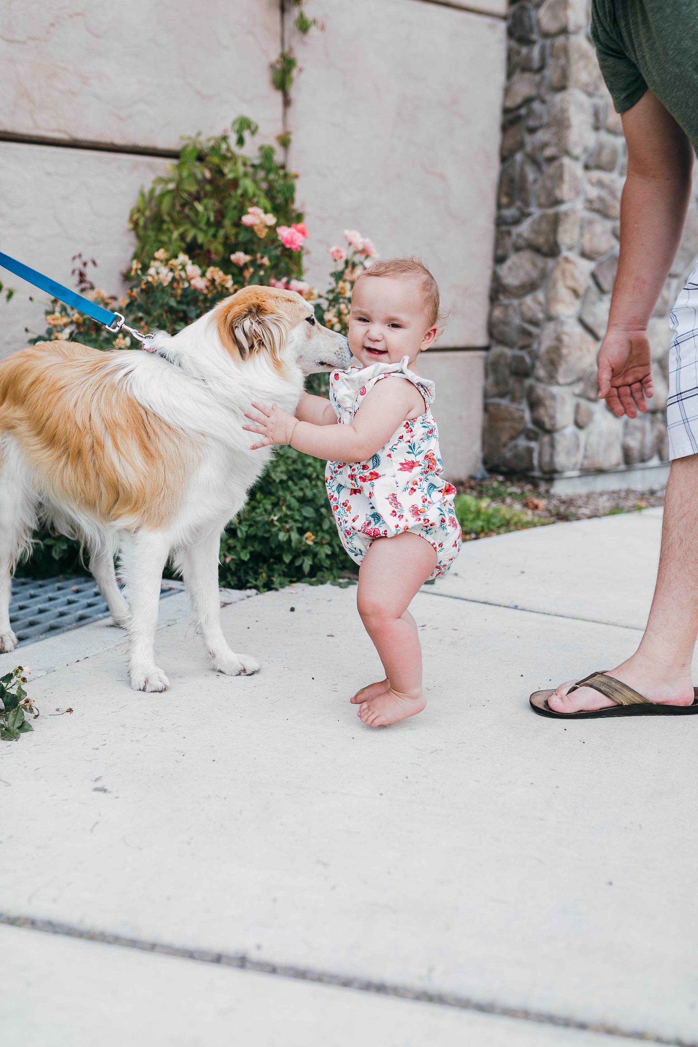 Logan Utah Family Photographer -4173.jpg