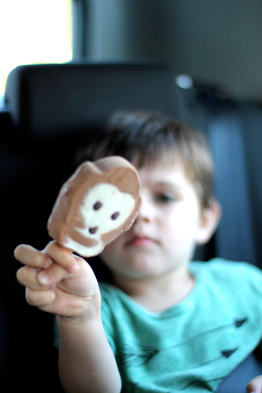 """Until we could eventually distract him with """" Monkey Ice Cream .""""Every evening on our way back to Dina and Noulis's to play with """"  the cunins""""  and have dinner, we'd stop for  Monkey Ice Cream  to eat on the way."""