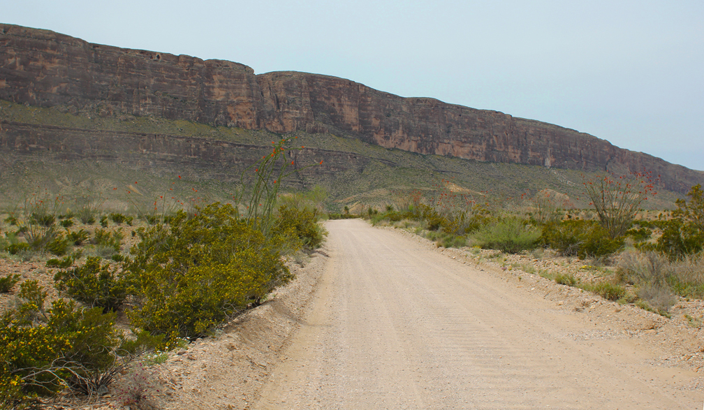 The last seven miles through the park were unpaved along Old Maverick Road. It was one of our favorite stretches of the park, with a new kind of landscape and an even larger array of colorful cacti flowers and plants.