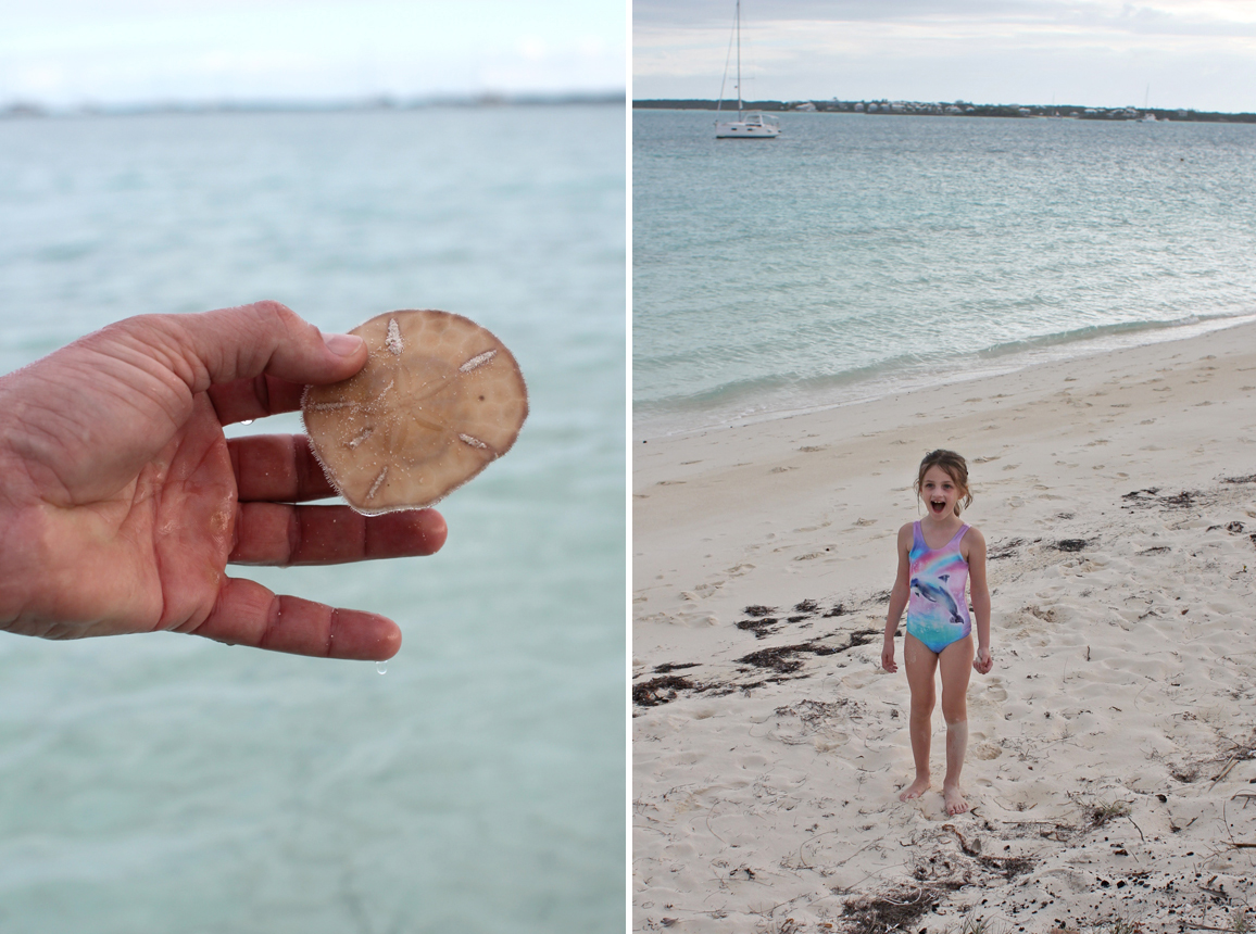 Scott found the sand dollars (again). He learned how to spot them and dig them up. Between the sharks and sting rays and conch and sand dollars, it was so amazing to interact with all this sea life in their natural habitat. (And we didn't even get to the many nearby sea turtles and dolphins!)
