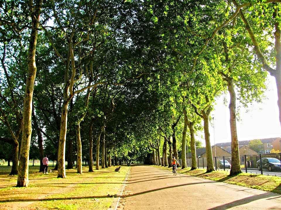 Victoria-Park-London-England