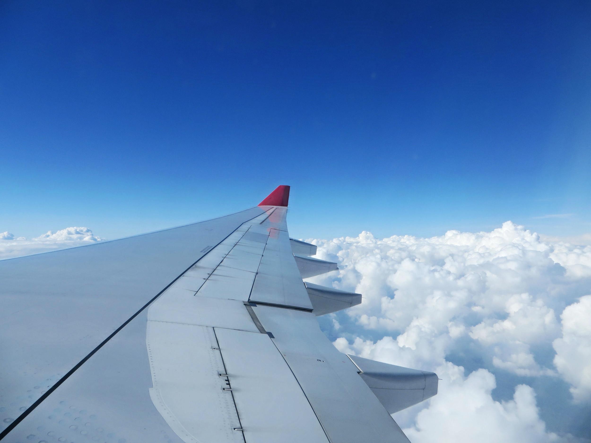 I-Like-Airplane-Food