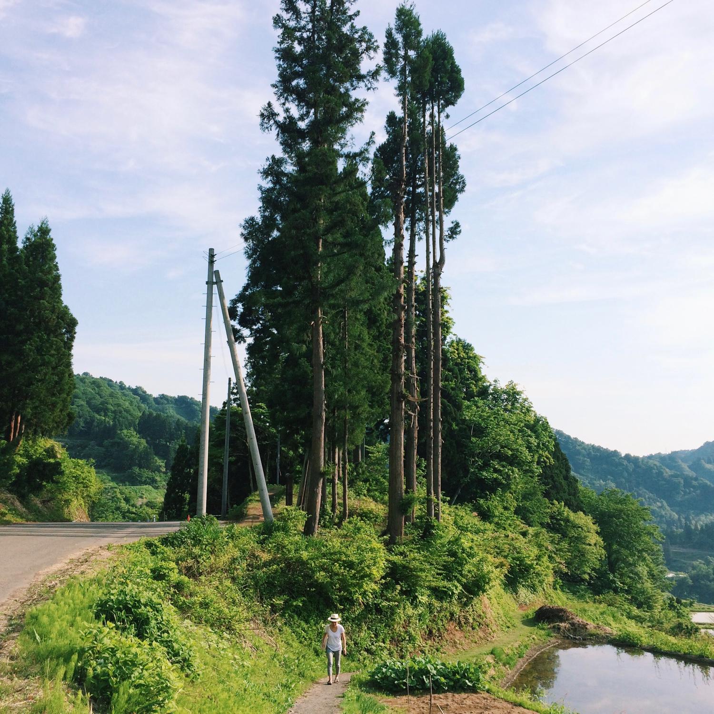 JAPAN-GO-ROUND with Suryo - 9.jpg