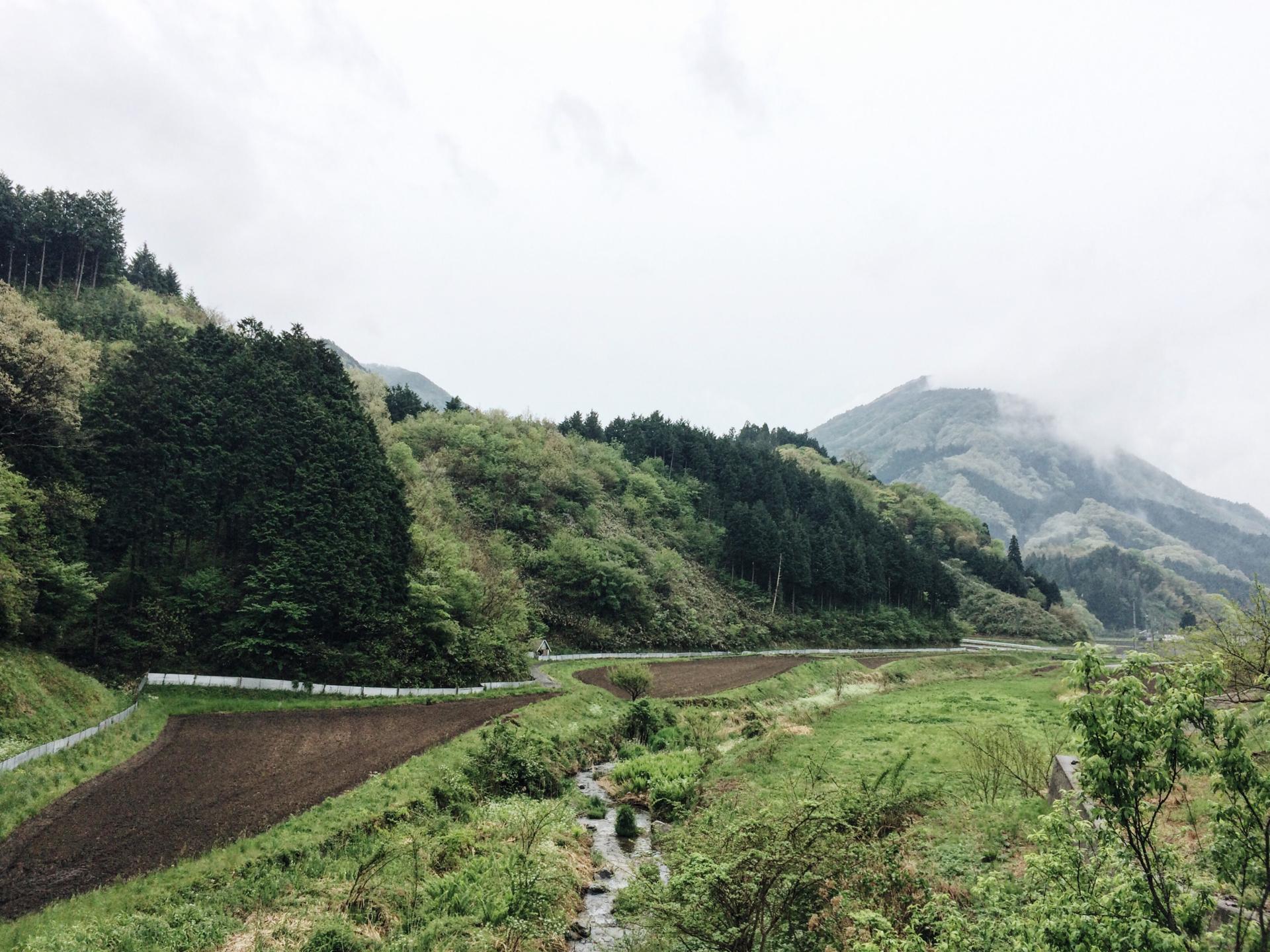 Maki_Hayashida_39.jpg