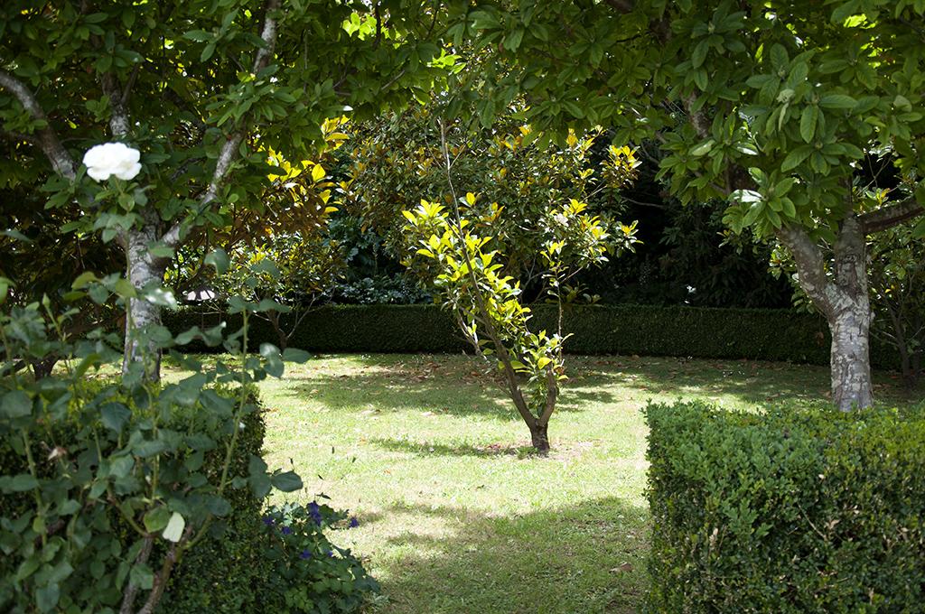 The Round Garden