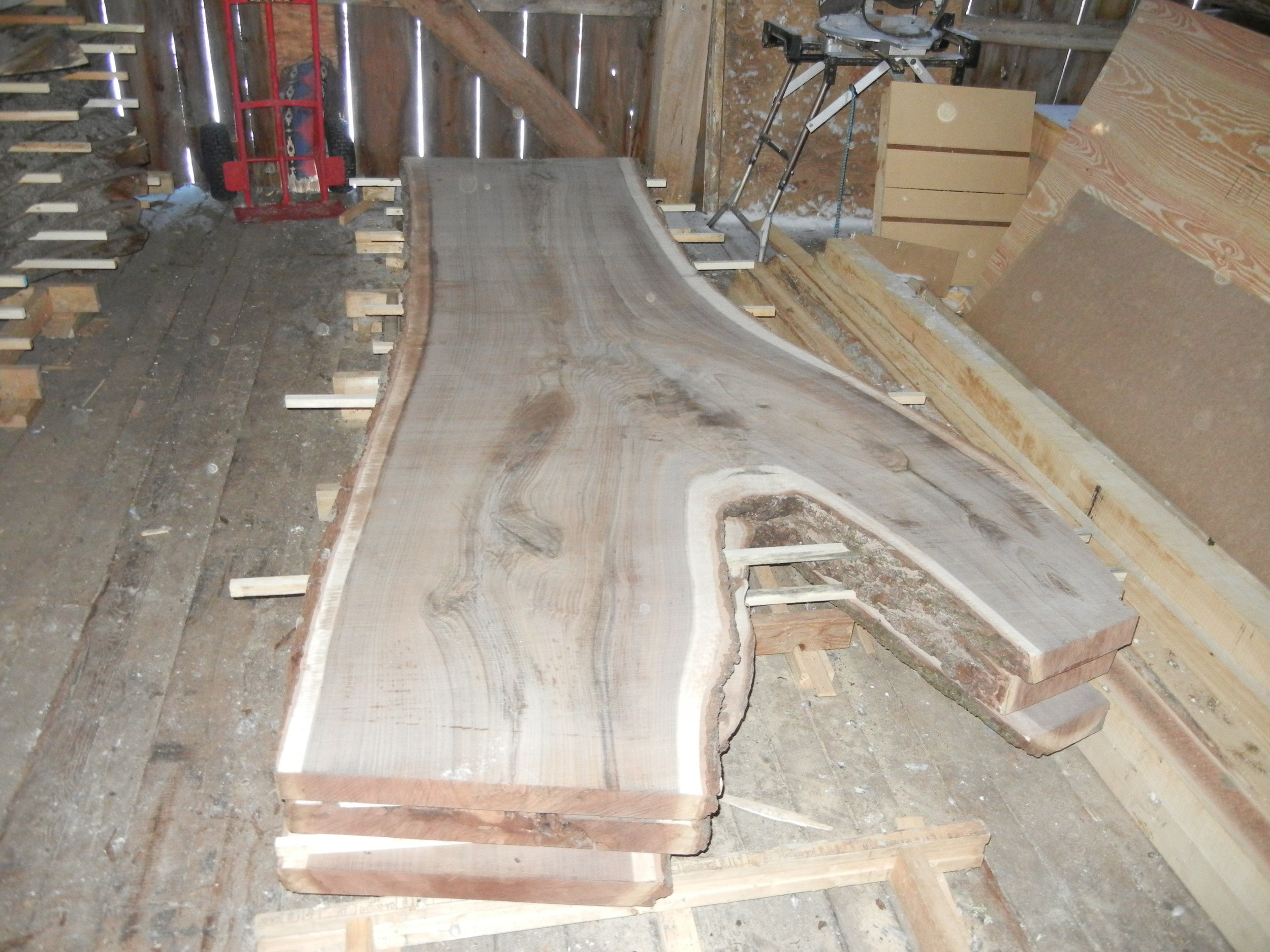 Large Black Walnut slabs being stacked for drying.