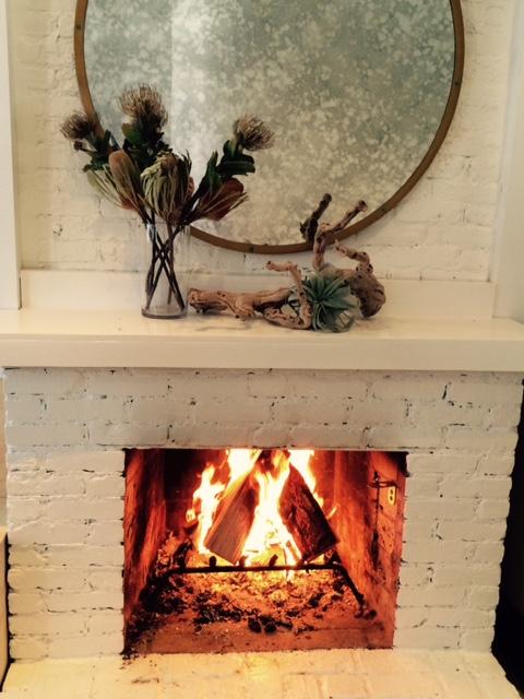 fireplace elk.jpg