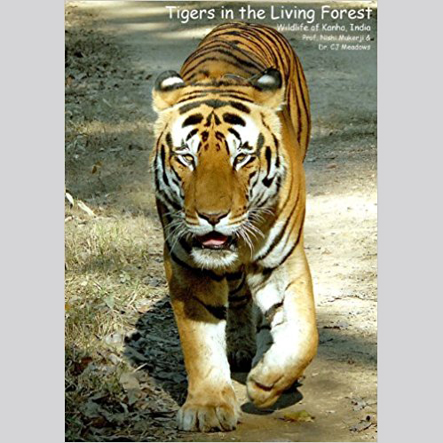 Tigers in the Living Forest: Wildlife of Kanha, India