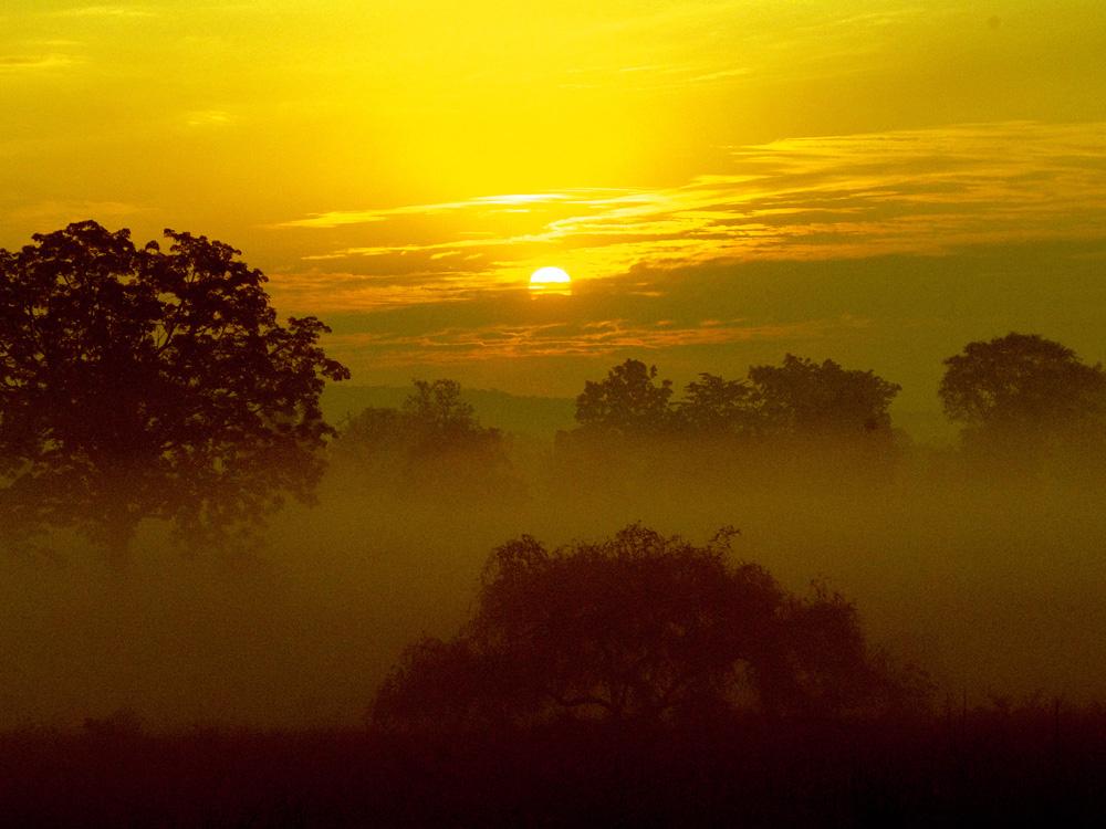 043 sun rise in Kanha.jpg
