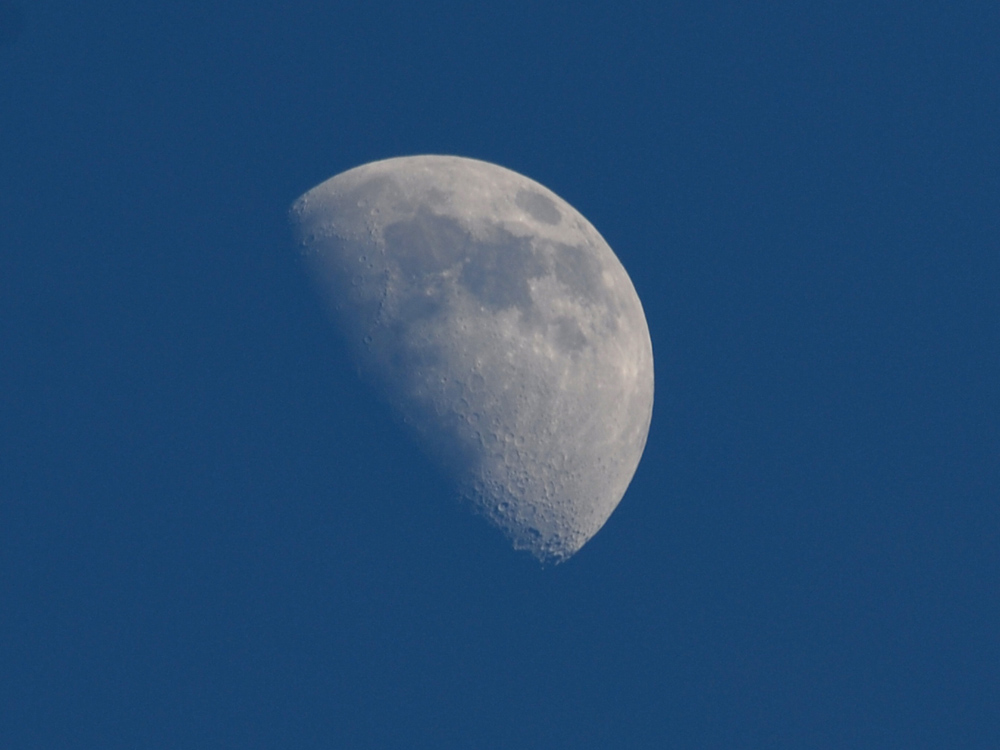 104 moon on a clear Kanha evening.jpg