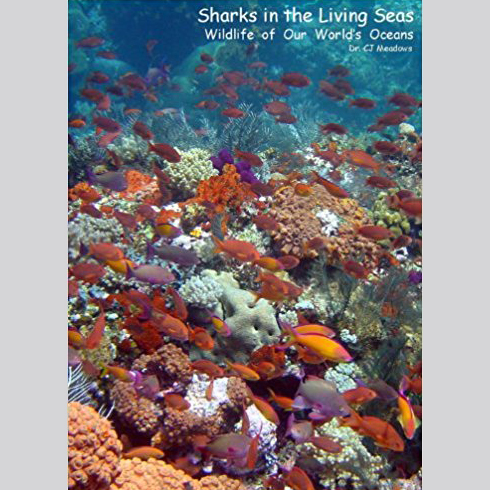 Sharks in the Living Seas: Wildlife of Our World's Oceans