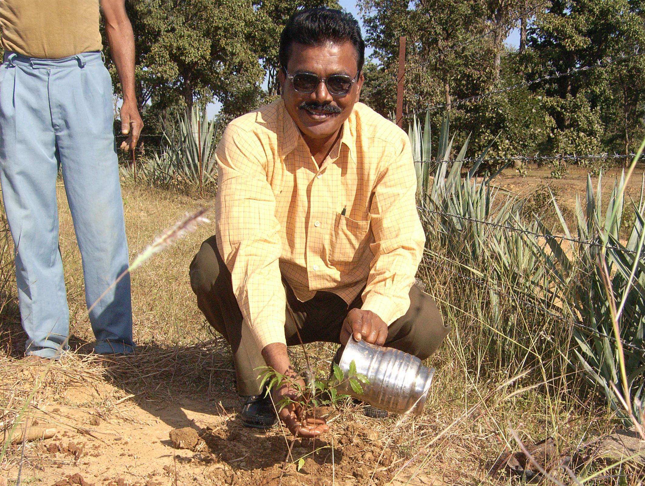 tree planting - sami mohammad.jpg