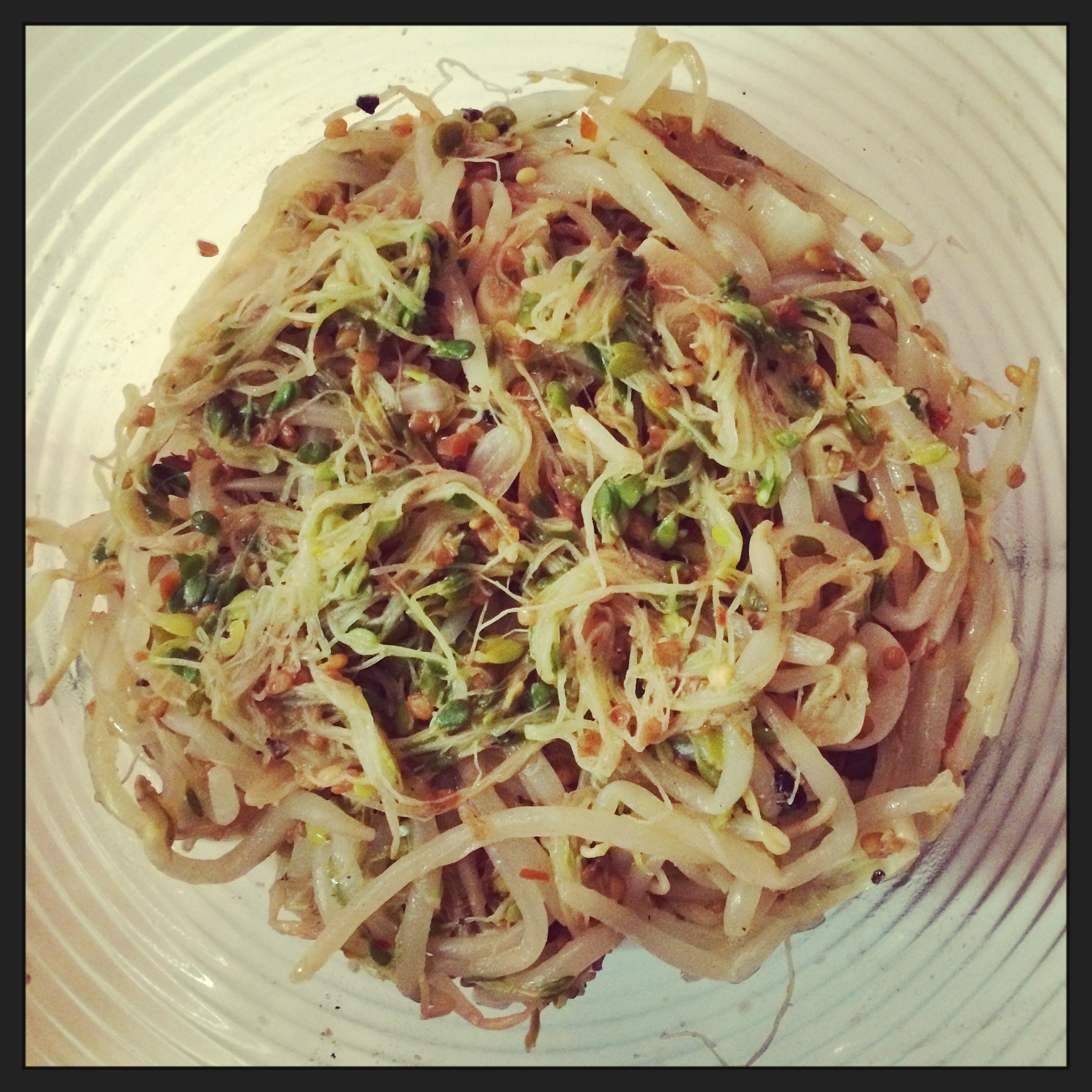 RAW SPROUT SALAD
