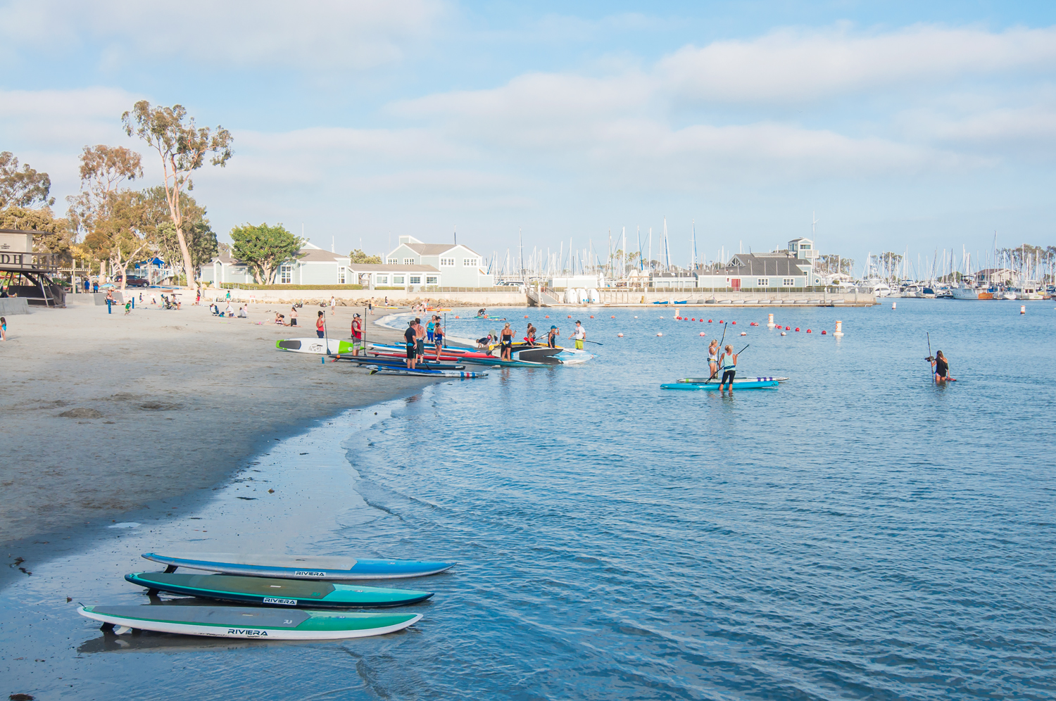 Dana Point Stock Photo DP0022