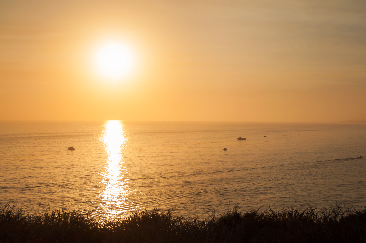 Dana Point Stock Photo DP0037