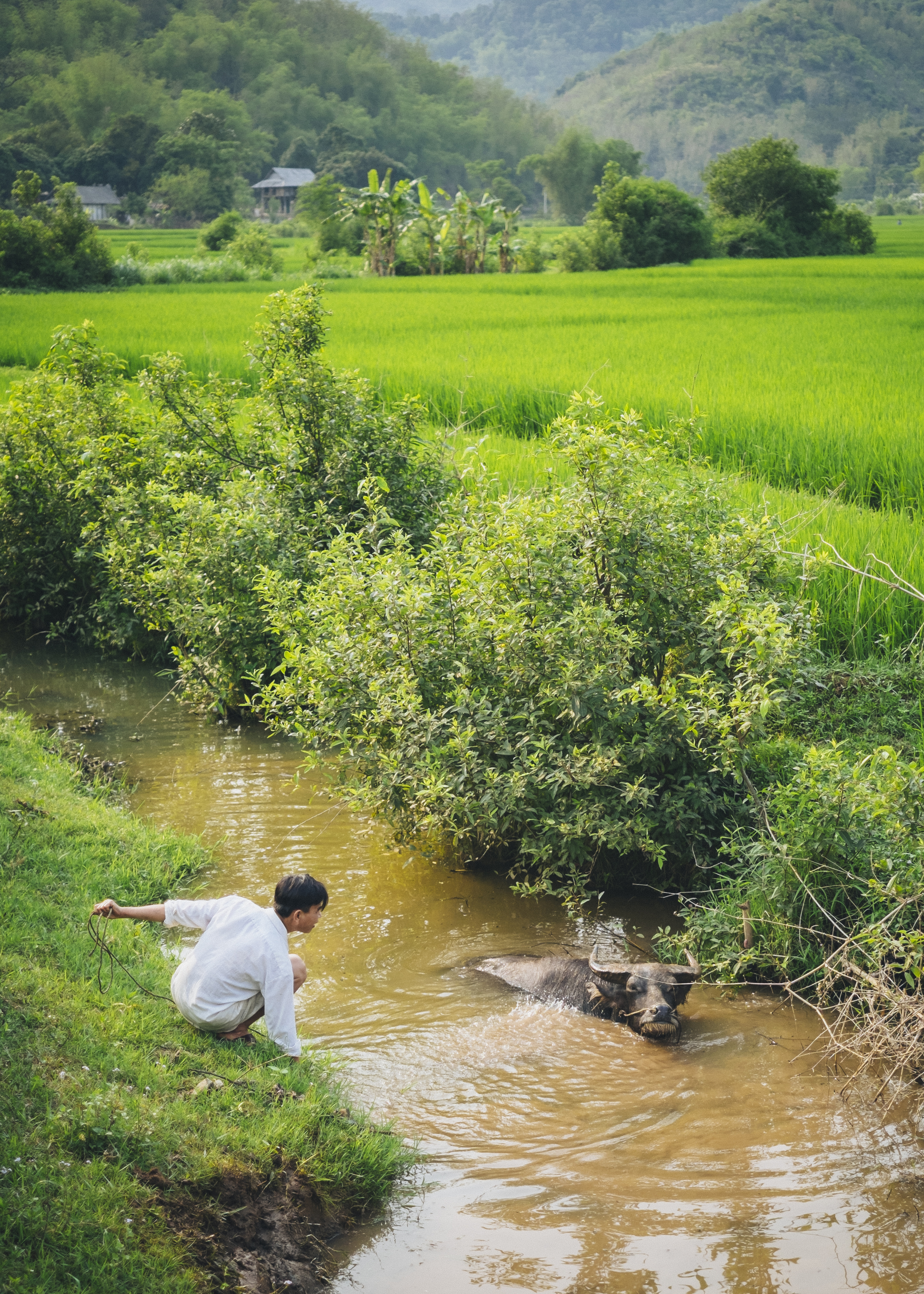 Vietnam-0336.jpg