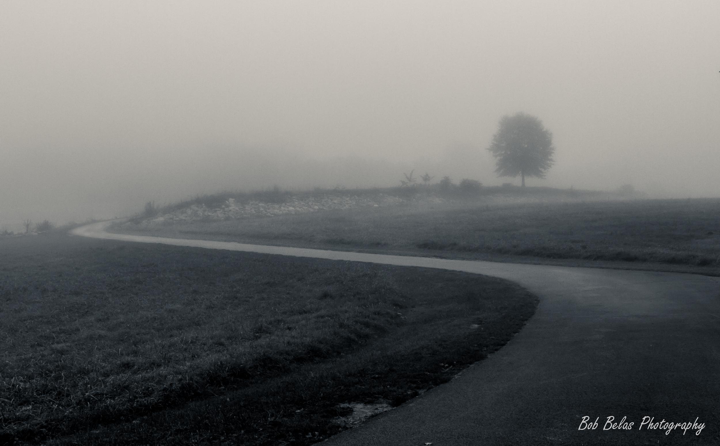 Lakeside Fog Monochrome
