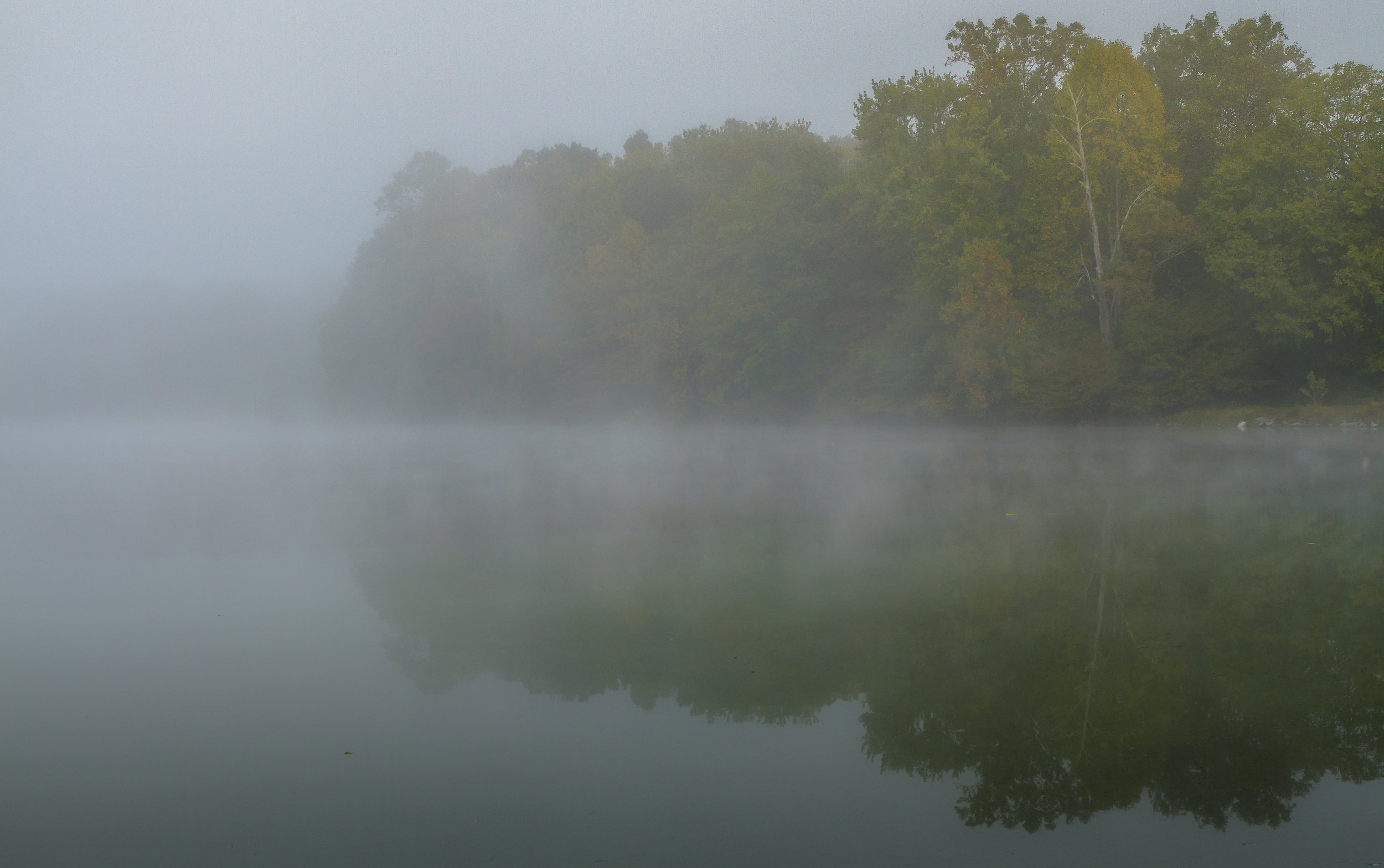 Foggy Reflections #2