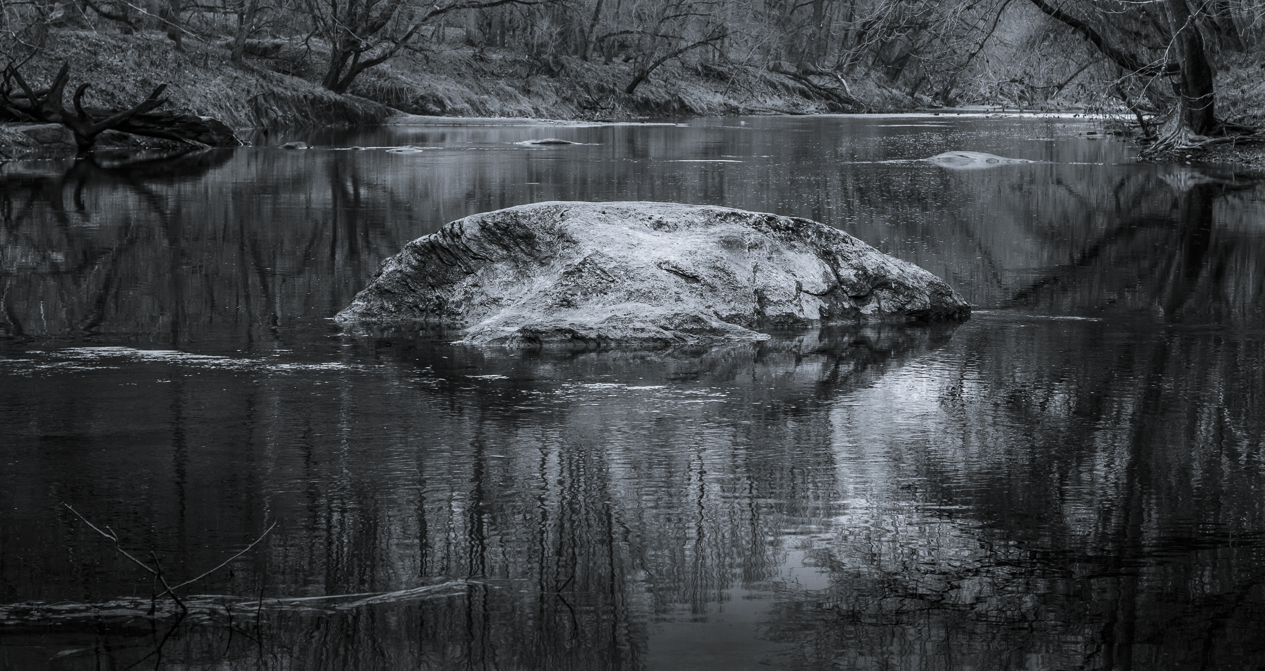 Patapsco River Rock #1