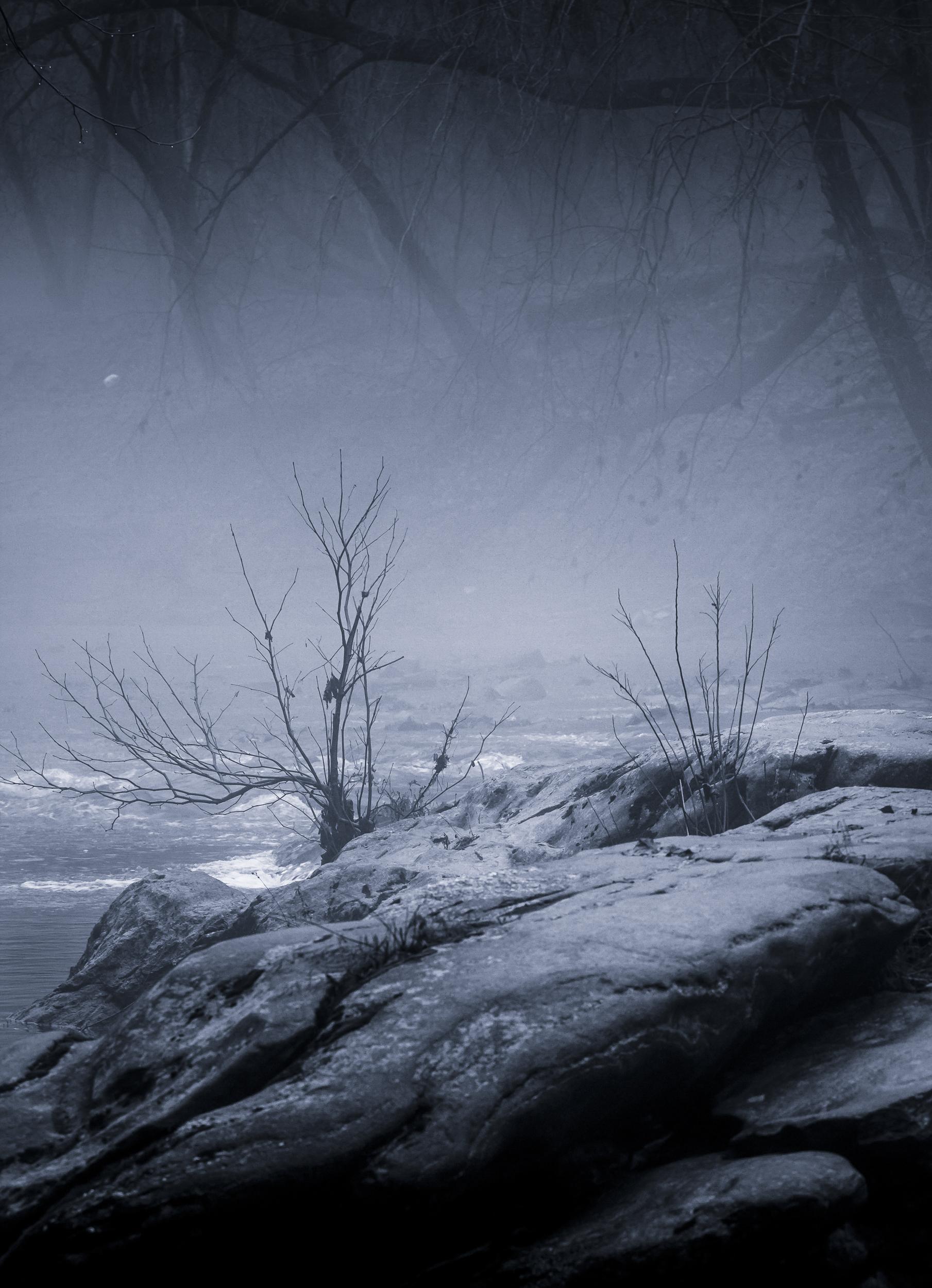 River Fog #4