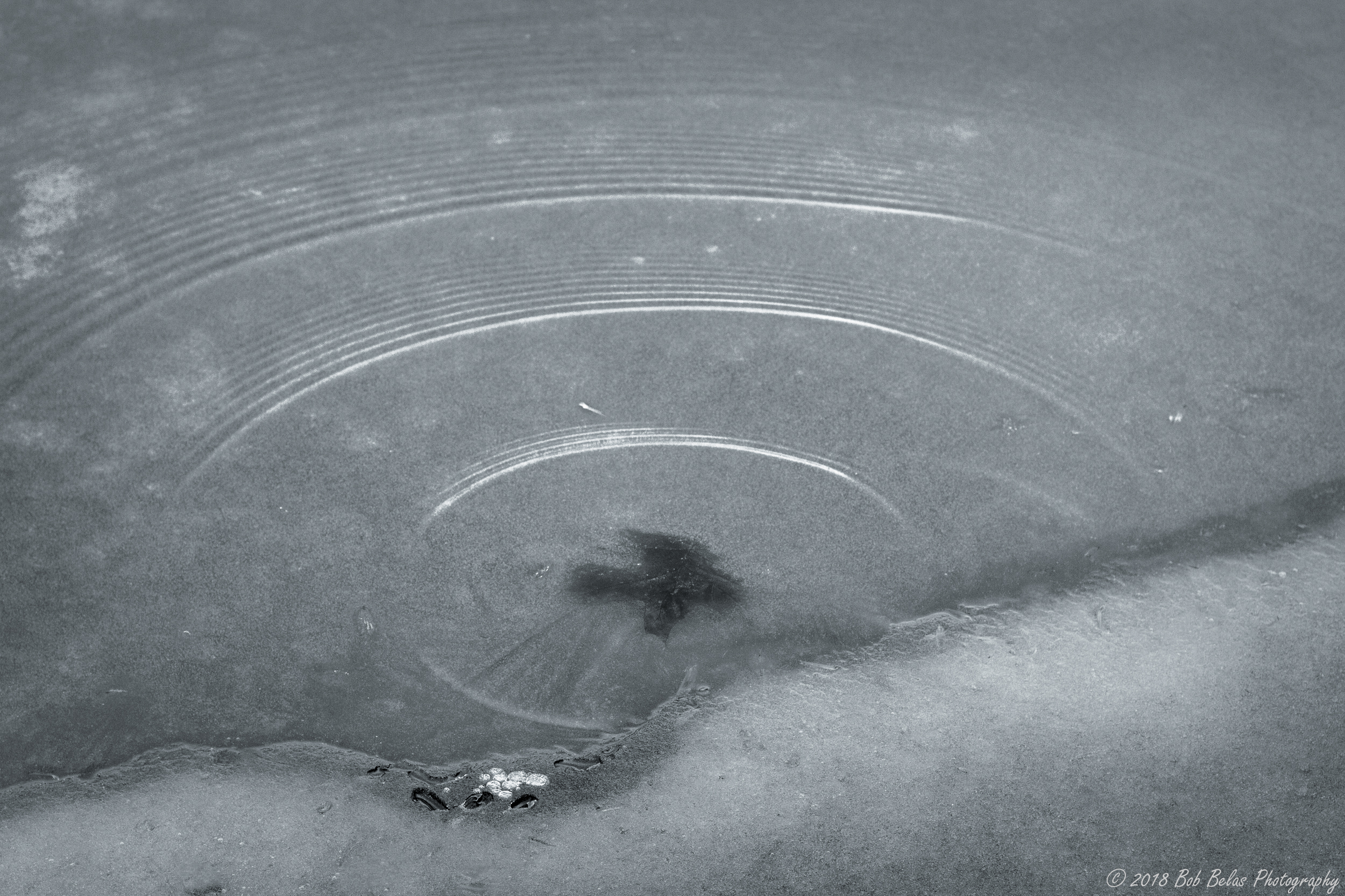 Ice Dream 5, monochrome