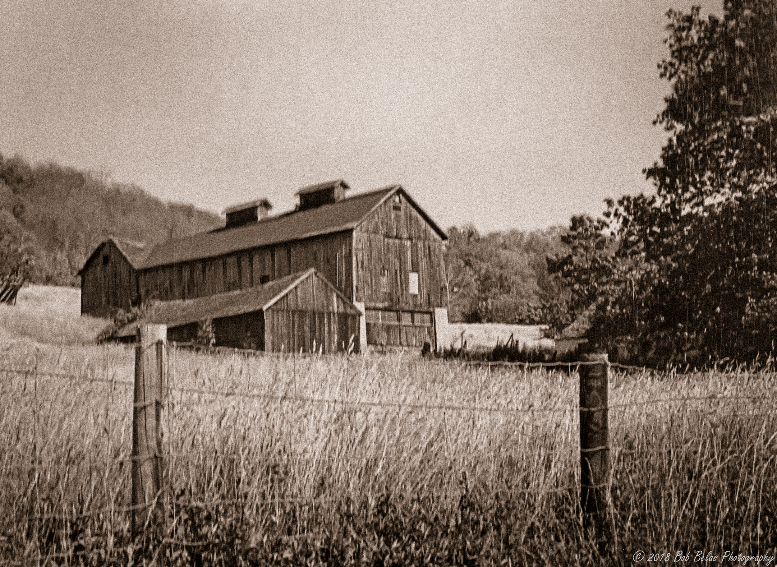 The Old Barn, monochrome