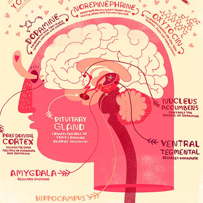brain in love icon.jpg