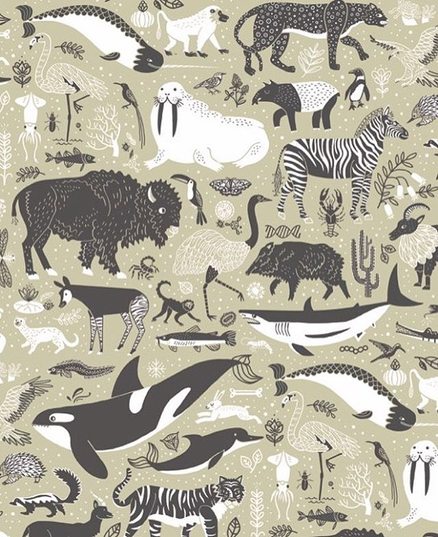 I have been working all year on this and I  can't help but sneak peek a tiny bit. these are the endpapers of my next book coming out this September, called The Wondrous Workings of Planet Earth. 🌎 It is all about our worlds important  ecosystems. #scientificliteracy  #scientificillustration #ecosystems