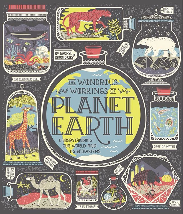 ✨🌎 So excited to reveal the cover for my next book, The Wondrous Workings of Planet Earth! Head to the link in my profile to preorder! 🌎✨