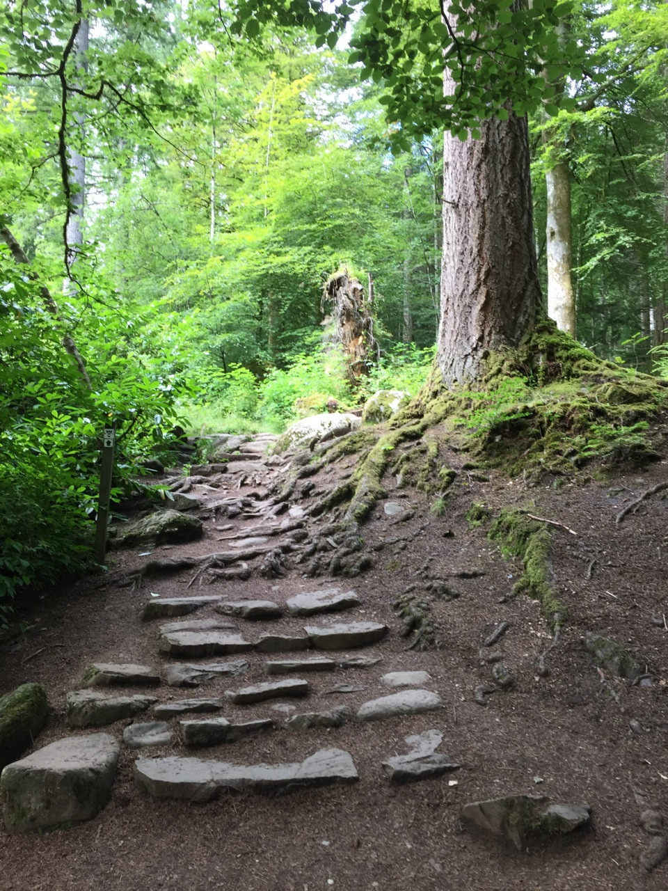 The Hermitage Pathway was been walked by the likes of Wordsworth, Queen Victoria and Mendelssohn. (Contributed photo)